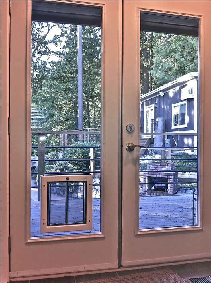 Pet Door Inserts For French Doors post thumbnail image